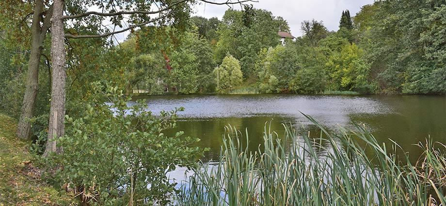 Teichlandschaft bei Gratzen
